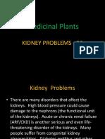 Kidney Problems-20.pptx
