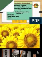 diapositivas de legislacion laboral