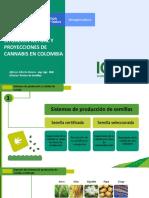3.-ICA-CANNABIS-MEDICINAL-CONGRESO