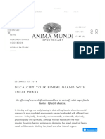Decalcifyyour pineal gland with these herbs – Anima Mundi Herbals