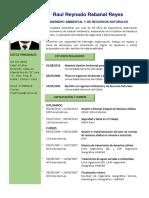 CV Ingeniero ambiental