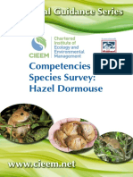 Information about the Hazel Dormouse