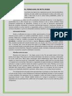 detoxifiere.pdf