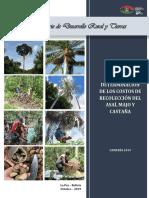 Documento costos de Recoleccion del Asai,Majo y Castaña.pdf