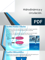 hidrodinâmica resumo