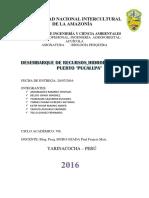 Informe-desembarque-pesquero-en-pucallpa