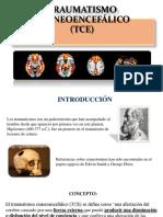 traumatismocraneoenceflico-150515085414-lva1-app6892.pdf