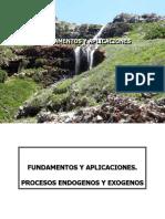 fundamentos de aplicacion procesos endogenos y exogenos