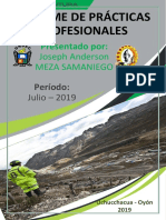 PRACTICAS PROFESIONALES.pdf