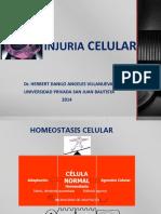 2. INJURIA CELULAR Dra Jara (2).ppt