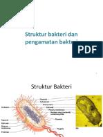 struktur dan pewarnaan bakteri.ppt