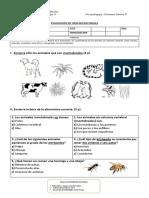 evaluación de los invertebrados (colaboración PIE)