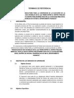 TERMINOS DE REFERENCIA IRMA CHICO