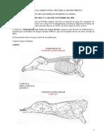RTIQ-Carnes-completo.pdf