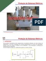 Módulo 11 - Seccionalizadores Automáticos