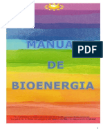 Manual de Bioenergia Módulo 2 (1).docx