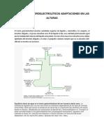 TRANSPORTE HIDROELECTROLÍTICOS ADAPTACIONES EN LAS ALTURAS.docx