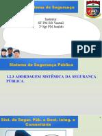 1.2.3. Sistema de Segurança Pública e Gestão Integrada e Comunitária - Módulo 1 - Abordagem Sistêmica
