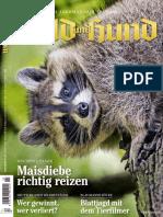 Wild_und_Hund__20_Juli_2017