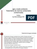 6 Tratamiento de matrices ambientales contaminadas