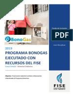 FISE_BONOGAS.docx