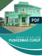 PROFIL PUSKESMAS CURUP 2019.pdf