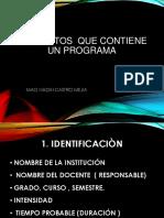 1.1.ELEMENTOS  PARA UN PROGRAMA.pptx