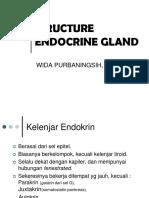 210212 - Gland Endocrine Structure - dr. Wida