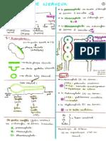 7. Système Nerveux (1) (Pr HAMMOUDI)
