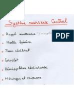 7. Système Nerveux (2) (Pr HAMMOUDI) (1)