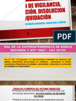DISOLUCION Y LIQUIDACION DE EMPRESAS FINANCIERAS