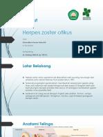 Referat HZO.pptx