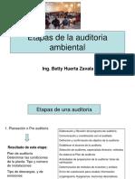 Etapas de la auditoria ambiental