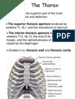 4. Thoracic ES.ppt