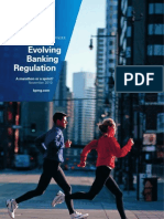 Evolving Banking Regulation Nov 2010