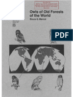 Owls of Old Forests of the World