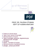 histology-of-nervous-tissue-2010.ppt