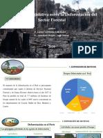 politica deforestacion- diapositiva