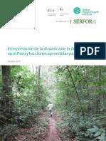 deforestacion en ucayali