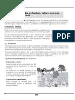 Bovinos_y_Equinos_03.pdf