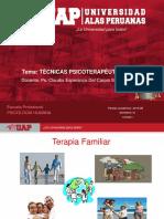 Ayuda 1-PSICOTERAPEUTICAS FUNDAMENTOS DE LA TERAPIA FAMILIAR SISTÉMICA