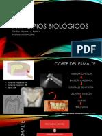 PRINCIPIOS BIOLÓGICOS