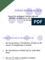 Challenges in Halal Hub