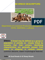 Breeds_and_breed_descriptor_Small_ruminants__2_.ppt
