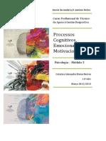 processoscognitivosemocionaisemotivacionais