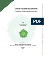 13620068.pdf