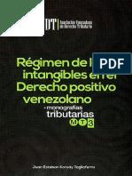 REGIMEN DE LOS INTANGIBLES EN EL DERECHO POSITIVO VENEZOLANO