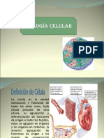 Biología Celular Modificado.ppt