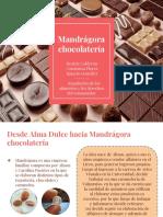 Mandragora Chocolateria