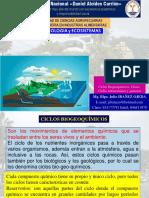 SEMANA 10 - Ciclos Biogeoquimicos